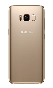 back SamsungS8 gold 180x300 copy 3